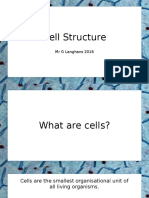 cell structure  1