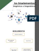 Trabajo de Biologia -Bioelementos