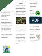 110801621-Triptico-Conservacion-Del-Medio-Ambiente.docx