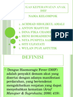PPT DHF FIX