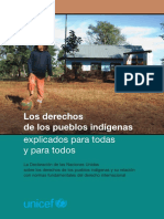 derechos_indigenas.pdf