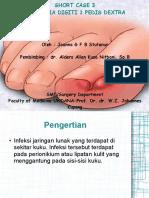 Short Case 3-Paronikia
