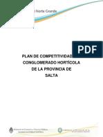 Plan de Competitividad Cluster Horticola Salta Final.