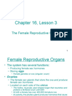 Chapter 16_ Lesson 3