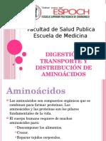 Digestion, Transporte y Distribucion de Aminoacidos