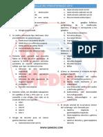 I Simulacro Preinternado 2016.pdf