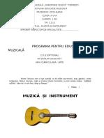 Optional Muzica Si Instrument