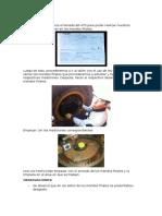 PROCEDIMIENTO, Observaciones y Conclusiones