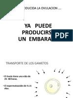 3.1 FERTILIZACION.pdf