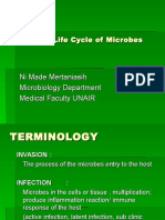 Character & Life Cycle of Microbes