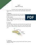 Step 1-4 Sken 1 Osteomielitis PADANG TH