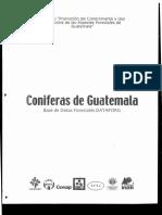 CONIFERAS ANTECEDENTES MULTICIT