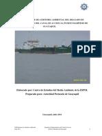 Auditoria Ambiental Informe XXII 07 2011