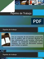 Papeles de Trabajo Auditoría Informática