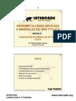 Cianuracion de Minerales, P. Navarro