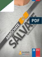 201211161310570.CINTURON_BASICA.pdf