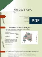 Región Del Biobio