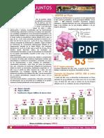 Boletin-Puno-004-2015-BI