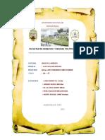 Fertilizacion in Vitro (Trabajo Grupal)