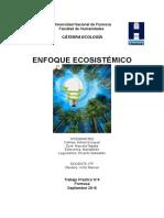 Trabajo Práctico- Enfoque Ecosistémico
