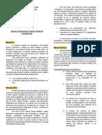 Informe 10 Efecto fotoelectrico. Laboratorio de Fisica III