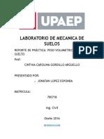 PVS.docx