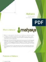 unit 1 mastery project mahara