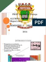 Magnesio EXPO