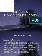 moleculas biologicas A.ppt