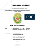 Policía Nacional Del Perú Ddhh