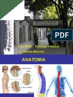 Cirugia Columna