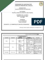5. Plan de cuidados de enfermeria (Don Pedrito).pdf