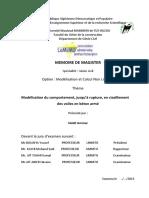 SAAD Ammar PDF