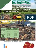 Distribución de Palma Aceitera en el Ecuador-David Palomino.pptx