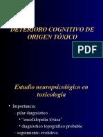 Deterioro Cognitivo Origen Toxico
