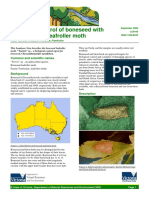 Biological Control of Boneseed With the Boneseed Leafroller Moth