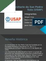 USAP Presentacion.pptx