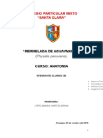 PROYECTO - Mermelada de Aguaymanto 1
