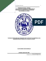Chacon-Flor.pdf