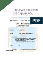 Analisis de La Marca Perù