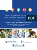 PPI CHNA Five-County Implementation Strategy 9-1-16.pdf