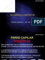 glomerulonefritisactual-110802064739-phpapp02
