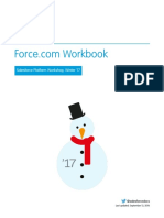 forcecom_workbook.pdf