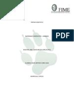 Materiales Compuestos - Carbono