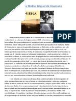 Análisis de Niebla