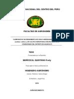 3.5 de TESIS LLECHUGA HIDROPONICA (Autoguardado) (Autoguardado) (Autoguardado)