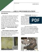 Lab6 Fossilization