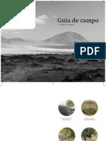 Guía de Campo - Atacama
