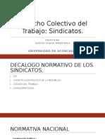 Sindicatos (1).pptx