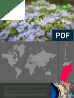 Boletin Nro.1-2015 Desierto Florido - Parque Nacional Pan de Azúcar FHD.pdf